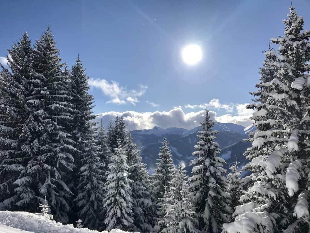 Besneeuwde bomen in Saalbach Hinterglemm, Oostenrijk