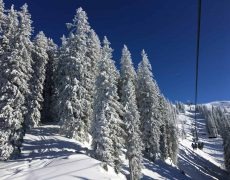 Begeleide skireizen Oostenrijk